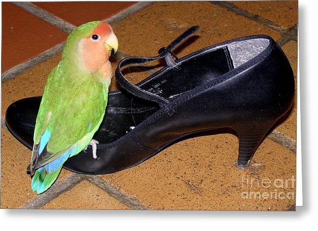 Cinderella Pickle Greeting Card