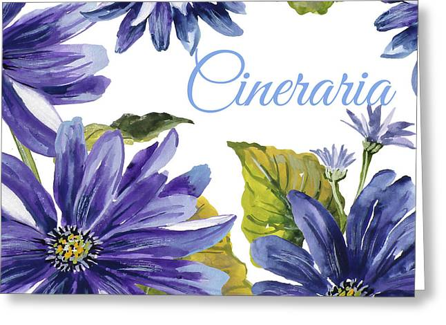 Cineraria-jp2587 Greeting Card by Jean Plout