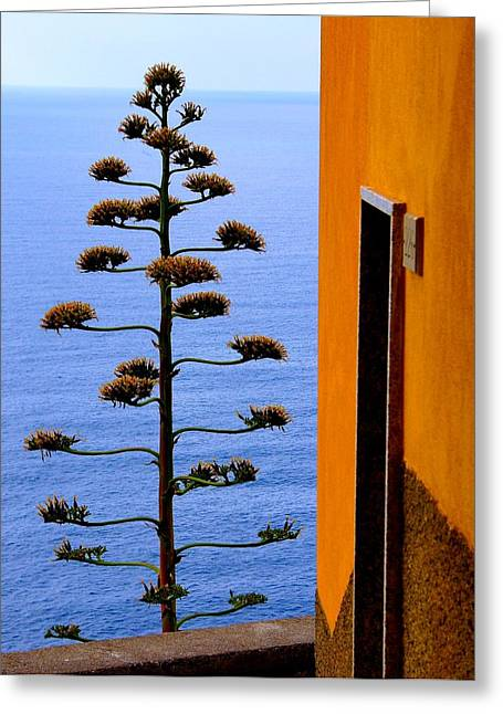Cinque Terre View Greeting Card