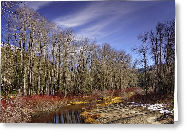 Cisco Grove In Early Winter Greeting Card by Janis Knight