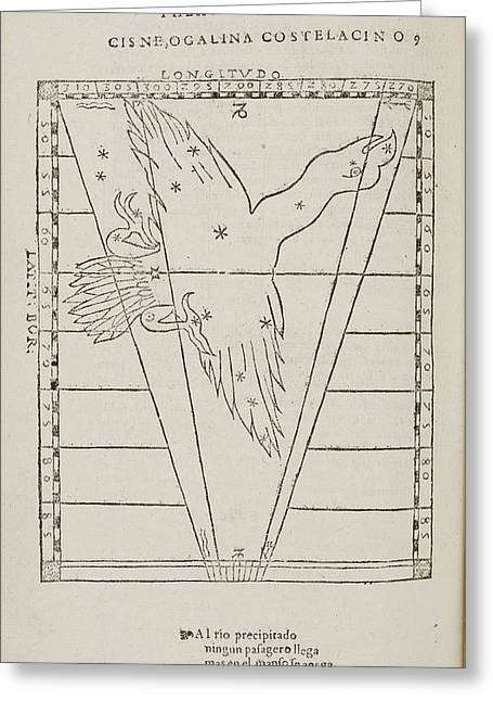 Cisne Star Constellation Greeting Card by British Library