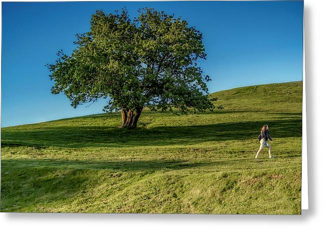 Citadell Hill Stroll Greeting Card by Ken Morris