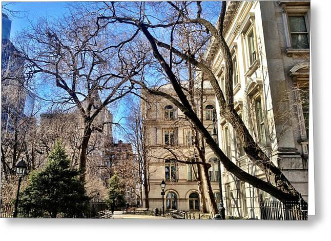 City Hall Park Ny Greeting Card by Lorella  Schoales