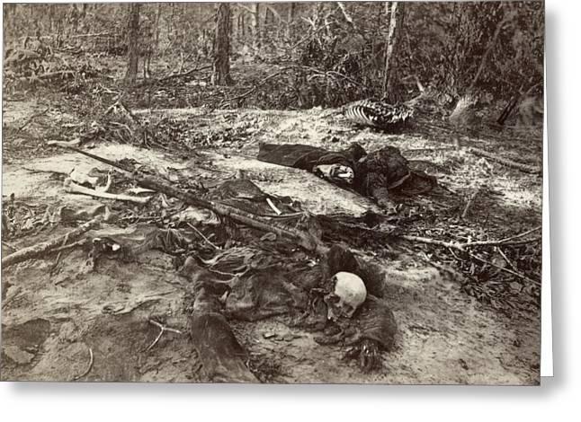 Civil War Unburied Dead Greeting Card by Granger
