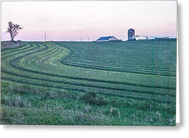 Farm Fields At Dusk Greeting Card
