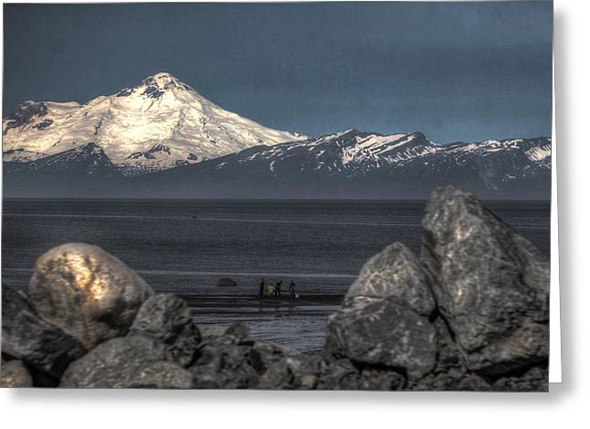 Clamming On The Cook Inlet Greeting Card