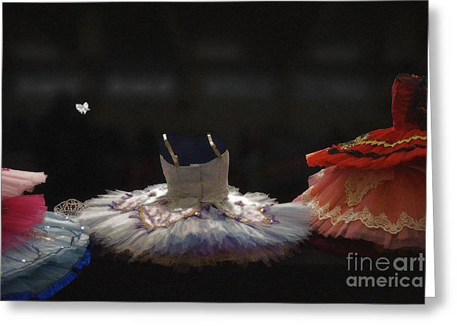 Classically Costumed Xiii Greeting Card by Cassandra Buckley