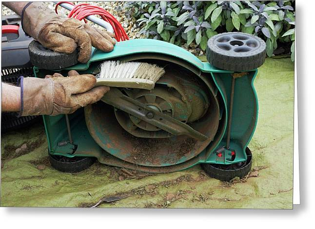 Cleaning A Lawnmower Greeting Card