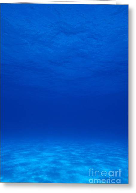 Clear Tropical Water Greeting Card