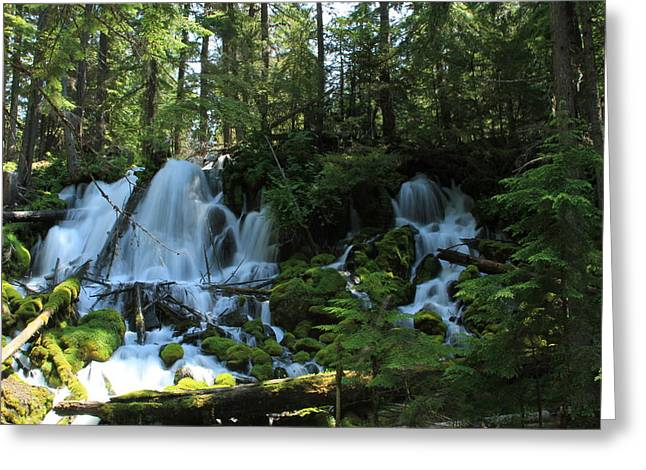 Clearwater Falls Of North Umpqua River Greeting Card by Lizbeth Bostrom