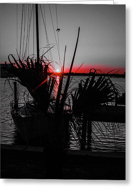 Clearwater Sunrise Greeting Card