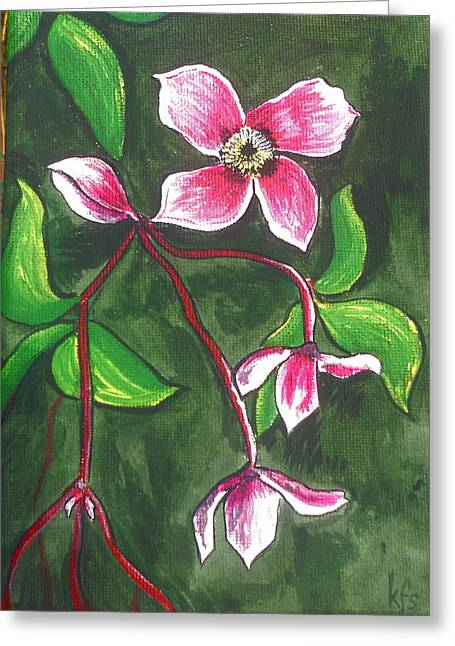 Clematis Montana Rubins Greeting Card by Kathy Spall