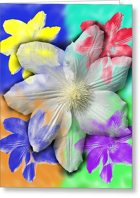 Clematis Osmosis One Greeting Card