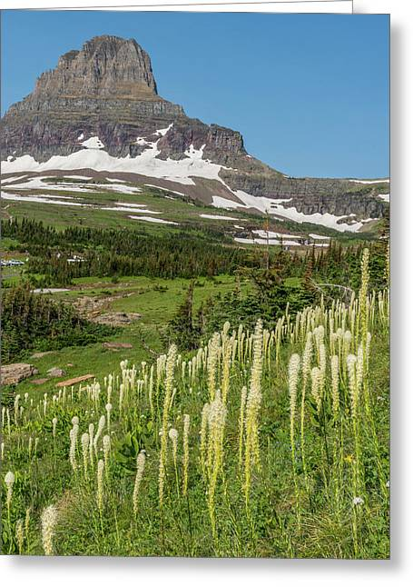 Clement's Mountain With Beargrass Greeting Card by Howie Garber