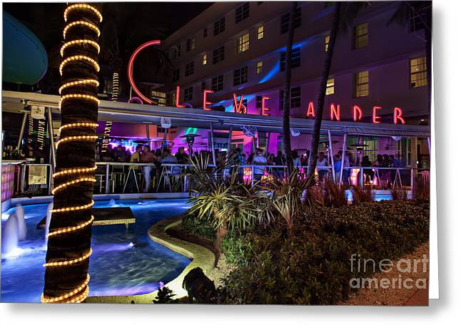 Clevelander South Beach Greeting Card by Anthony Festa