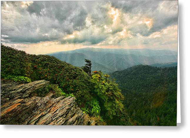 Cliff Tops At Mt. Leconte Gsmnp Greeting Card
