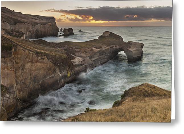 Cliffs And Tunnel Beach Otago New Greeting Card by Colin Monteath