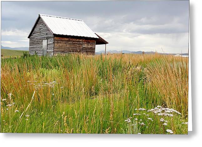 Cline Ranch Outbuilding II Greeting Card