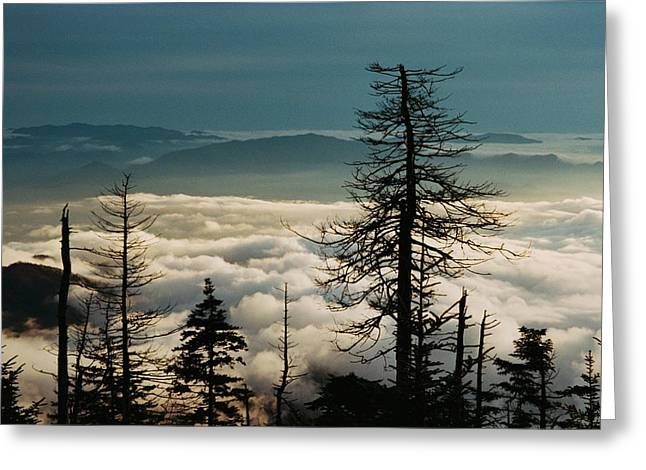 Greeting Card featuring the photograph Clingman's Dome Sea Of Clouds - Smoky Mountains by Mountains to the Sea Photo