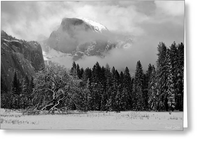 Cloaked In A Snow Storm - Monochrome Greeting Card by Heidi Smith