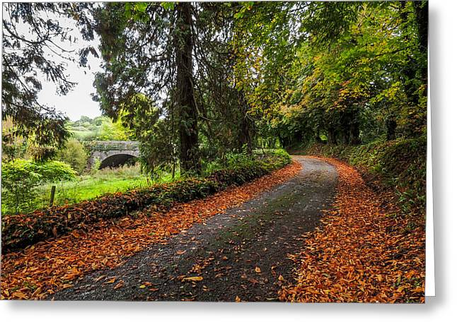Clondegad Country Road Greeting Card