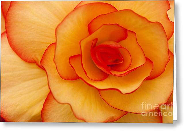 Close To Saturn Greeting Card by Anne Gilbert