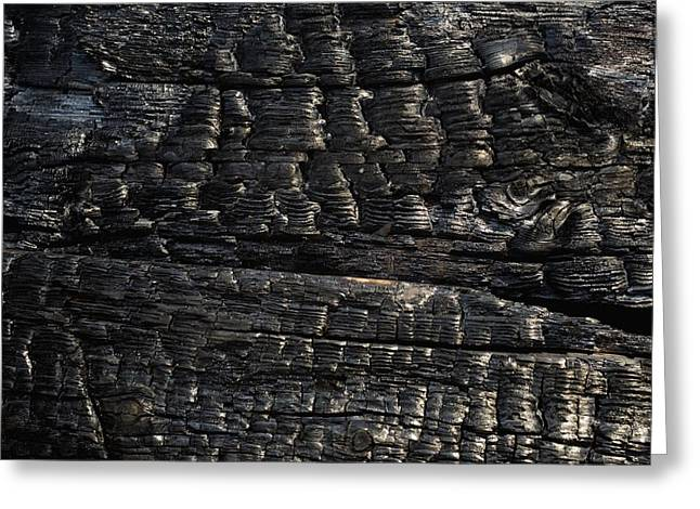 Close-up Of Charred Wood Greeting Card