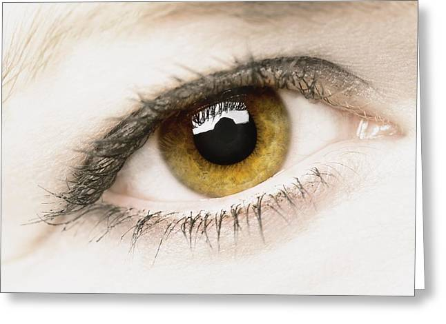 Close Up Of Eye Greeting Card by Darren Greenwood