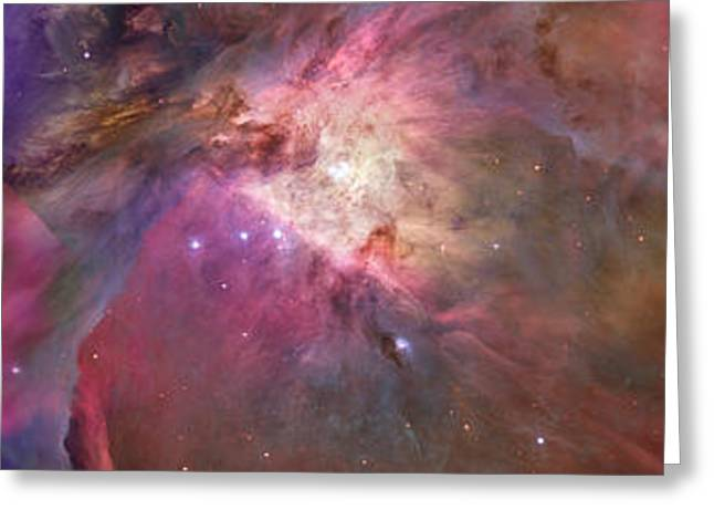 Close-up Of Galaxy With Iris And Tulips Greeting Card