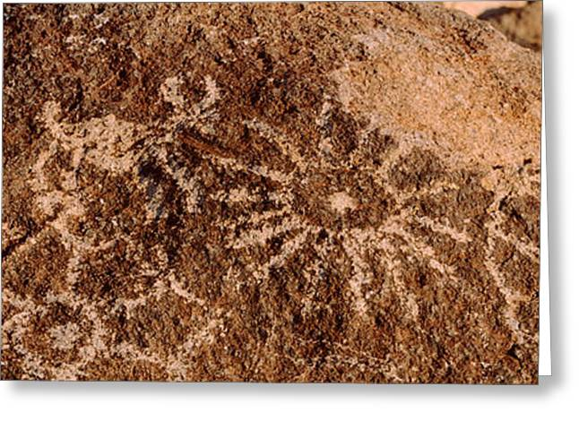 Close-up Of Petroglyphs On A Rock Greeting Card by Panoramic Images