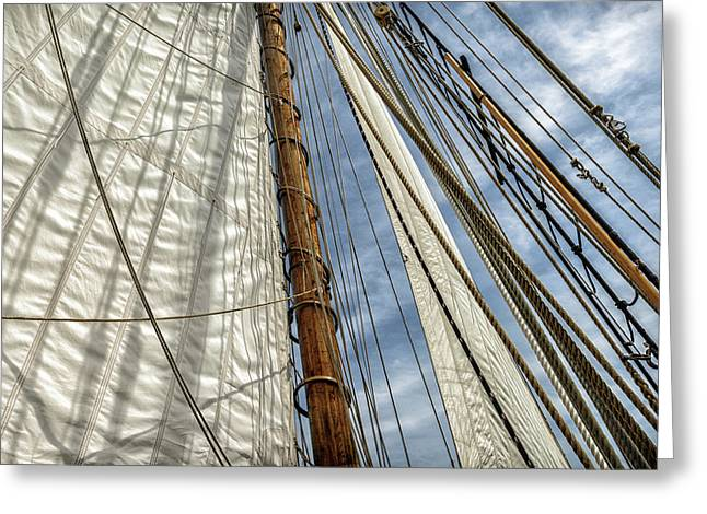 Close-up Of Sails And Mast Greeting Card by Rona Schwarz