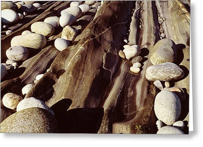 Close-up Of Stones, Pemaquid Greeting Card