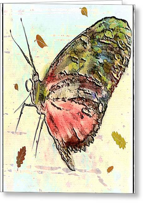 Cloud Butterfly Greeting Card by Jill Balsam