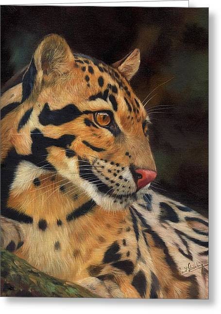 Clouded Leopard Greeting Card by David Stribbling