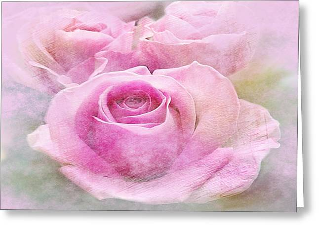 Clouded Pink Roses Greeting Card