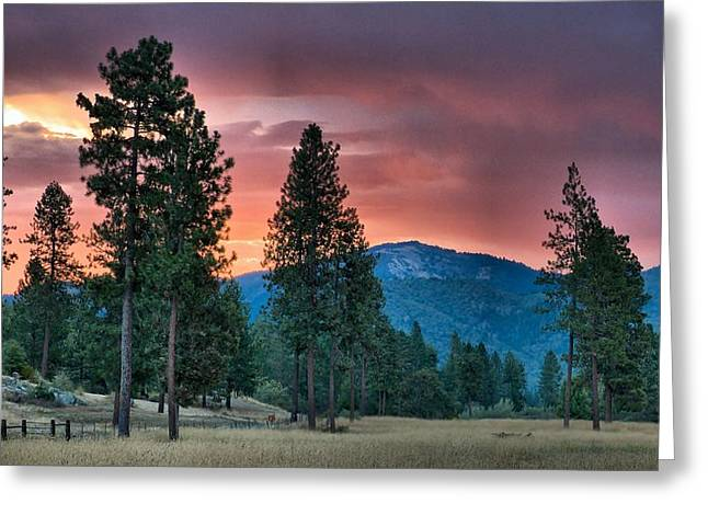 Greeting Card featuring the photograph Clouded Sunrise by Julia Hassett