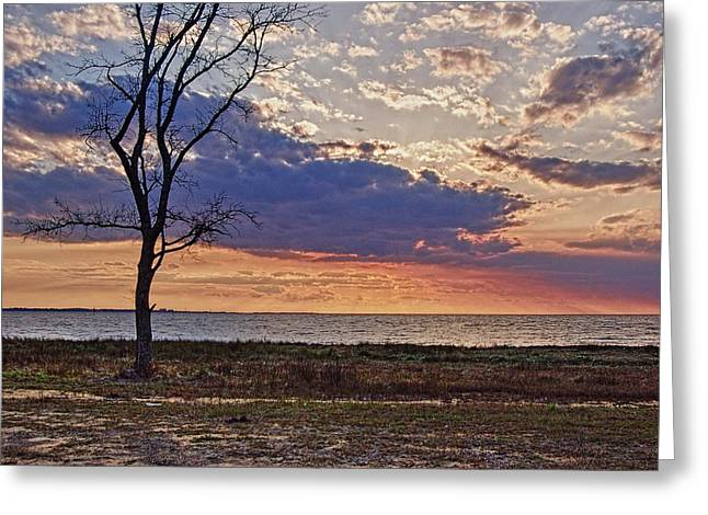Clouding Up On Oyster Bay Greeting Card by Michael Thomas