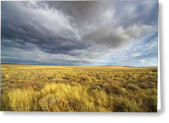 Clouds And Prairie Hart Mt N R Greeting Card by Yva Momatiuk John Eastcott
