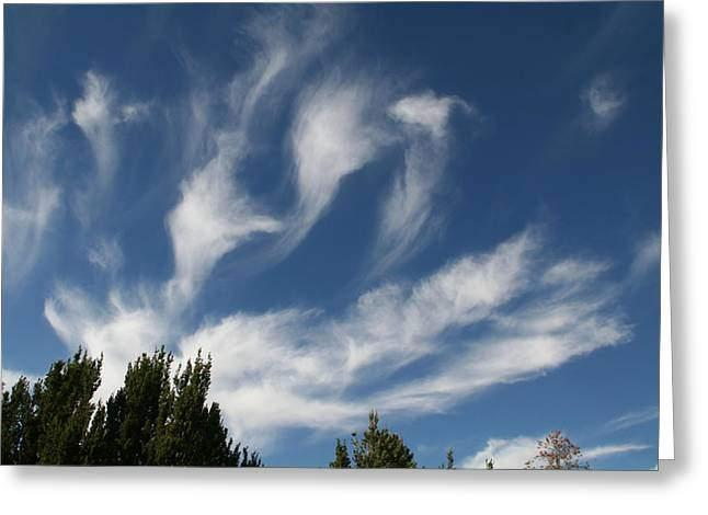 Greeting Card featuring the photograph Clouds by David S Reynolds