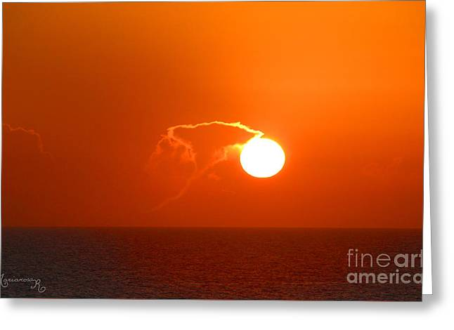 Lassoing The Setting Sun Greeting Card
