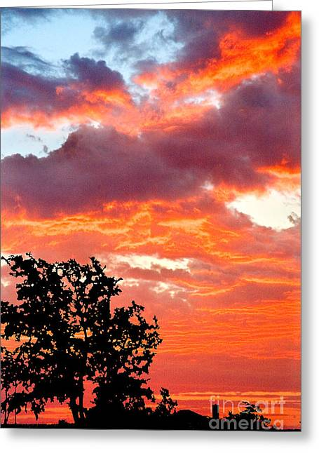 Greeting Card featuring the photograph Clouds On Fire by Mae Wertz