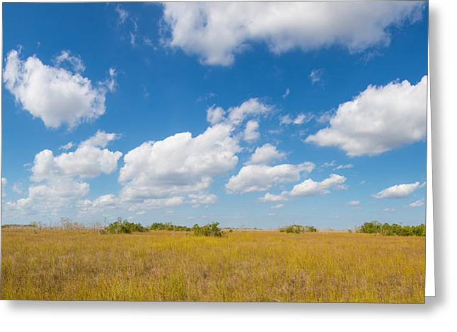 Clouds Over Everglades National Park Greeting Card by Panoramic Images