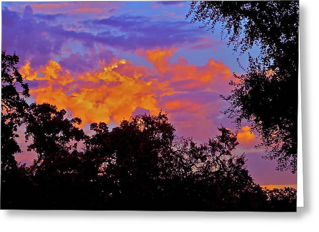 Clouds Greeting Card by Pamela Cooper