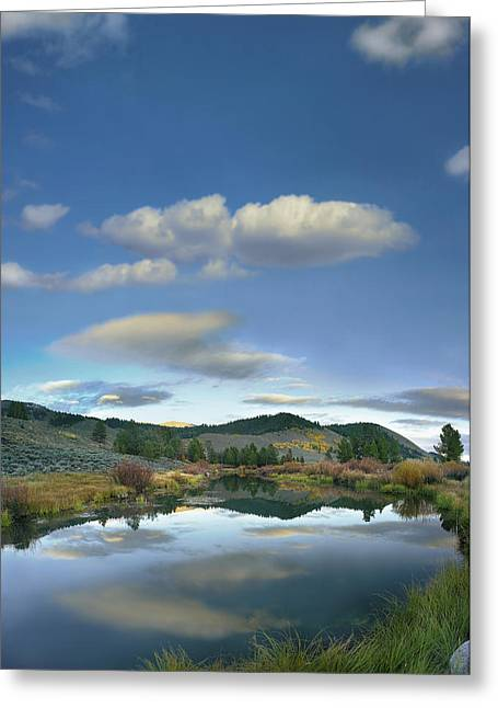 Clouds Reflected In Salmon River Idaho Greeting Card by Tim Fitzharris