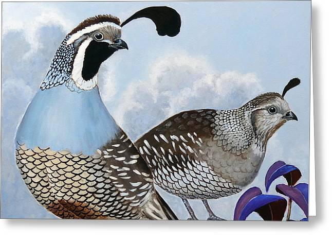 Cloudy California Quail Greeting Card by Ande Hall