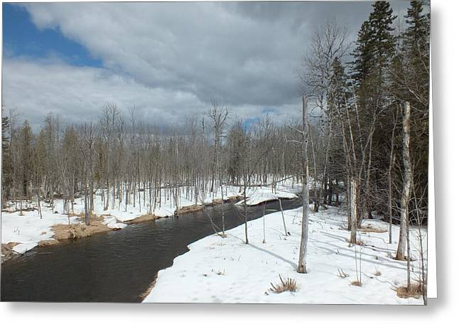 Greeting Card featuring the photograph Cloudy Spring Day by Gene Cyr