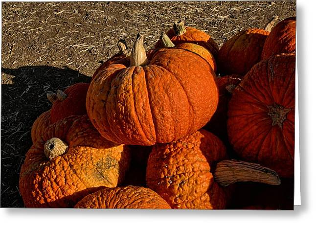 Knarly Pumpkin Greeting Card by Michael Gordon