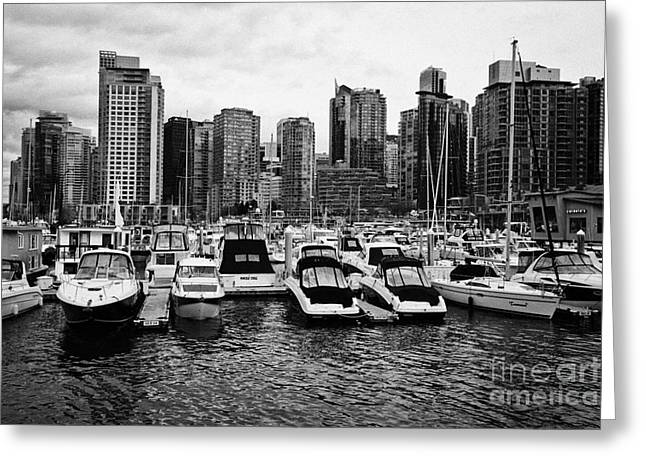 coal harbour marina and high rise apartment condo blocks in the west end Vancouver BC Canada Greeting Card by Joe Fox