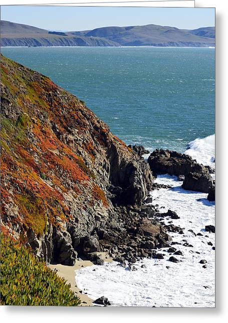 Coast Greeting Card by Brent Dolliver