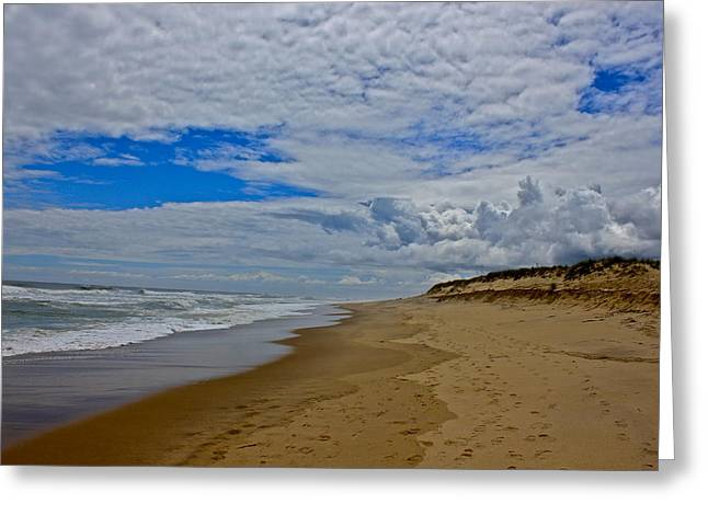 Greeting Card featuring the photograph Coast Guard Beach by Amazing Jules